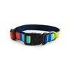 Party Stripes - Pet Collars