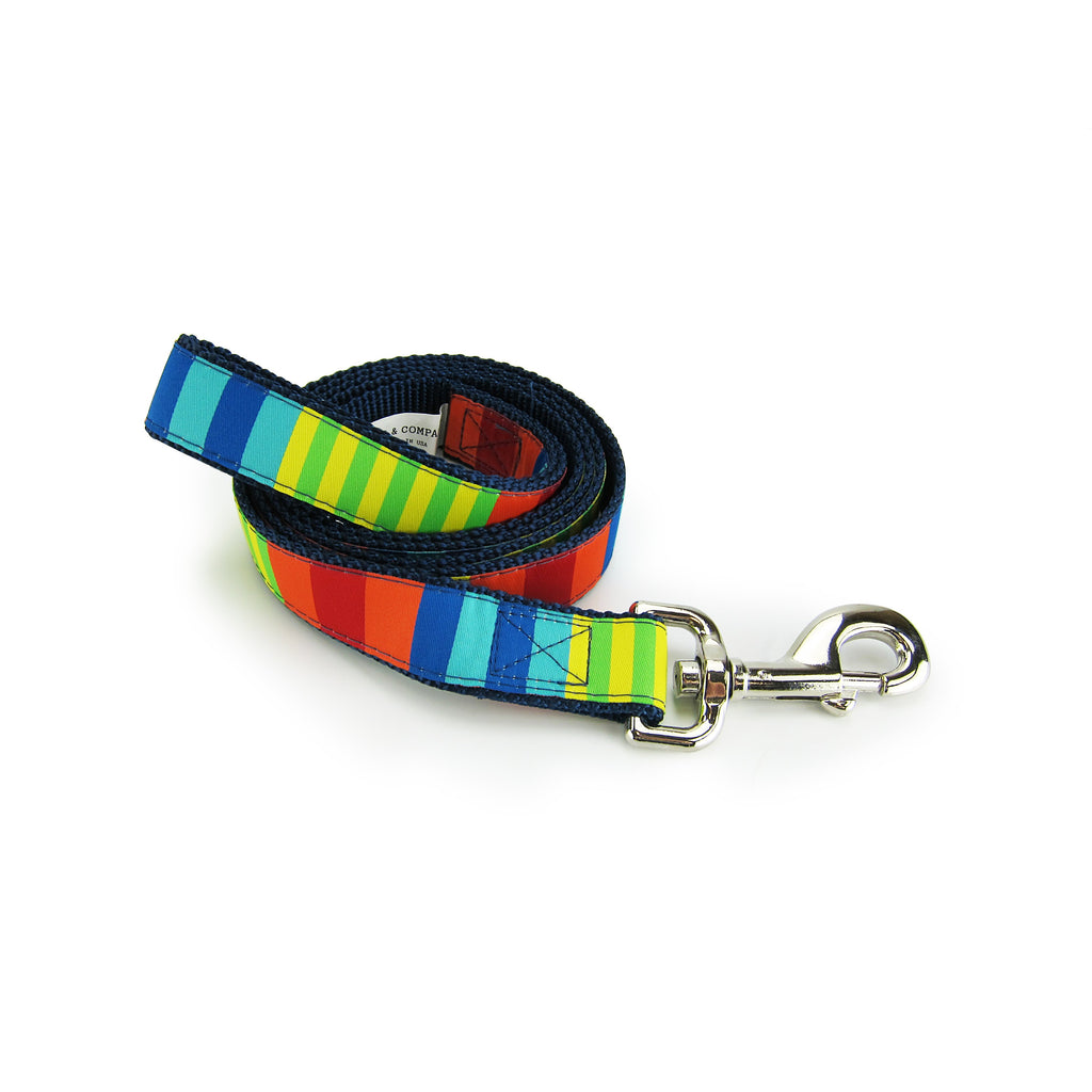 Party Stripes - Pet Leashes