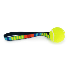 Party Stripes - Tennis Ball Toss Toy