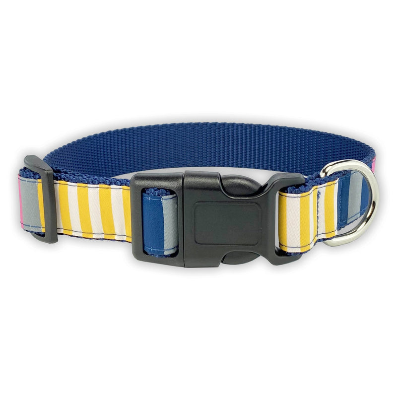 Sunshine Stripe - Pet Collars