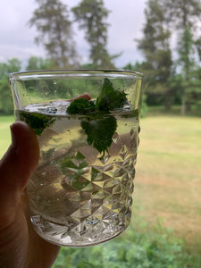 My Herbal Bitters Made A Tasty Mojito