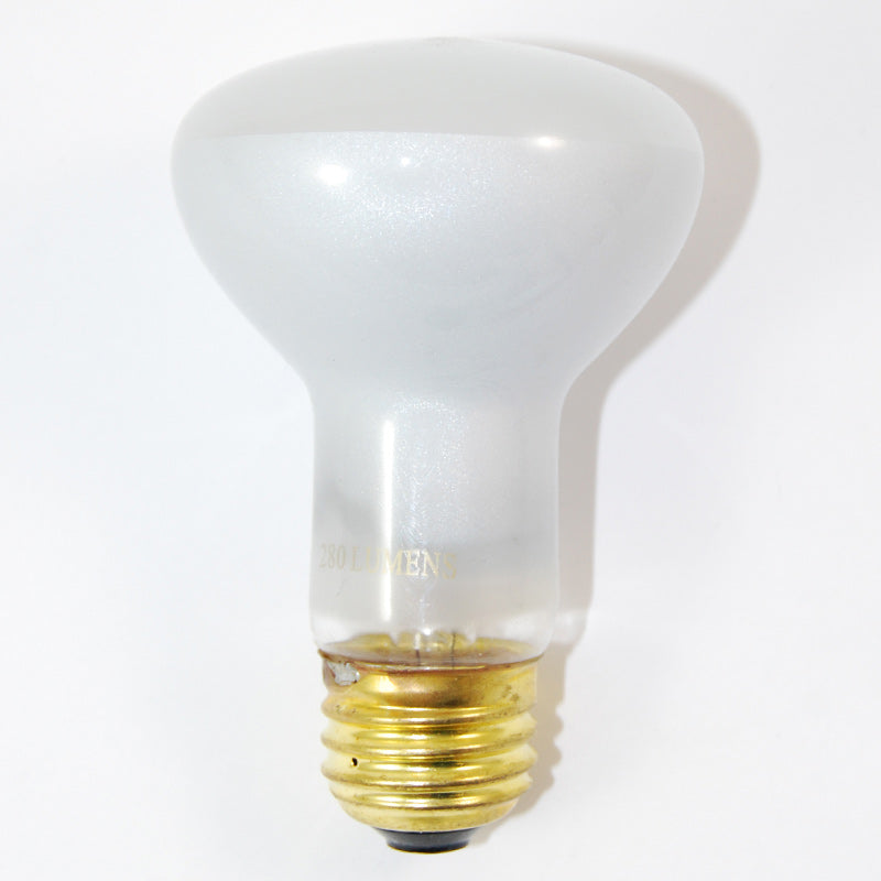 Satco S8519 45W 130V R20 Frosted E26 Medium Base Incandescent light bulb