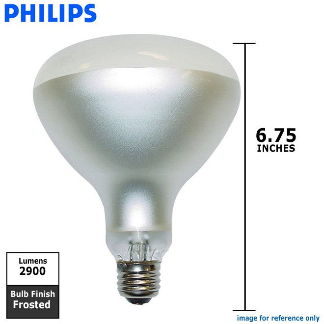 Philips 300w 12v R40 E26 Frosted Swimpool Underwater Incandescent Light Bulb