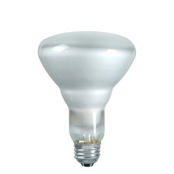 Sylvania 75w 130v BR30 E26 2850k Incandescent Light Bulb