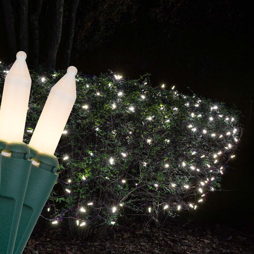 4' x 6' White Frost Christmas Net Lights, 150 Lamps on Green Wire