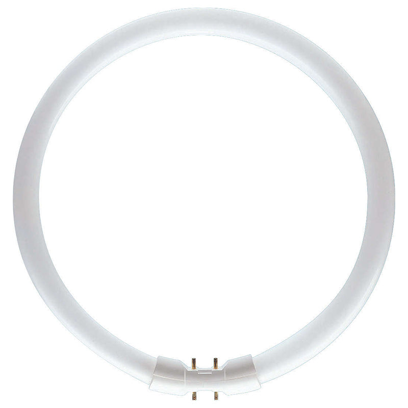 Philips 22w Master TL5 Circular Cool White 4000k 2GX13 Fluorescent Light Bulb