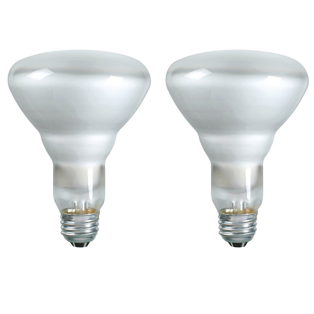 2Pack - Philips 65w 120v BR30 Frosted FL55 Duramax Incandescent Reflector Light Bulb