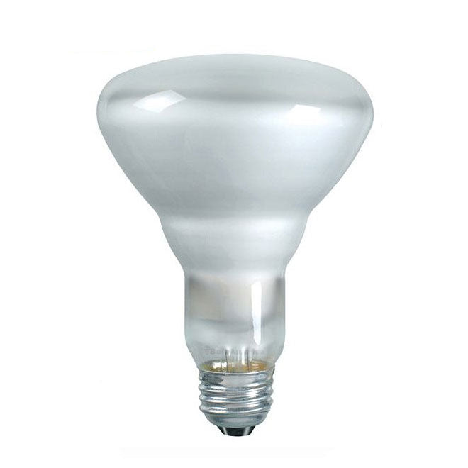 Philips 65w 120v BR30 Frosted FL55 DuraMax Reflector Incandescent Light Bulb - 3 Pack