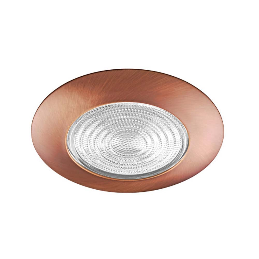 6 in. Bronze Recessed Shower Trim with Glass Fresnel Lens
