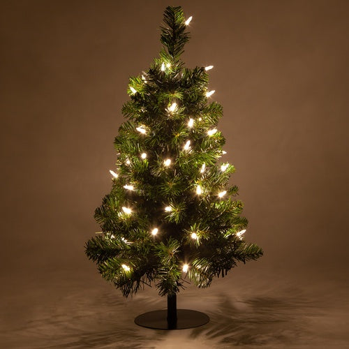2 Trees - 2' Winchester Fir Walkway Tree, Warm White LED Lights
