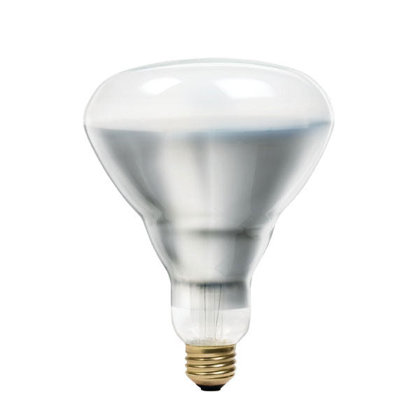 Philips 40w 120v BR40 Frosted E26 FL Halogen Indoor Light Bulb