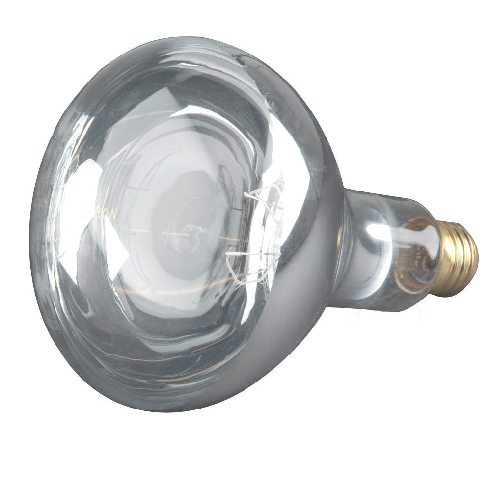 GE 250W 120V R40 Infrared Clear Heat E26 Medium Base light bulb