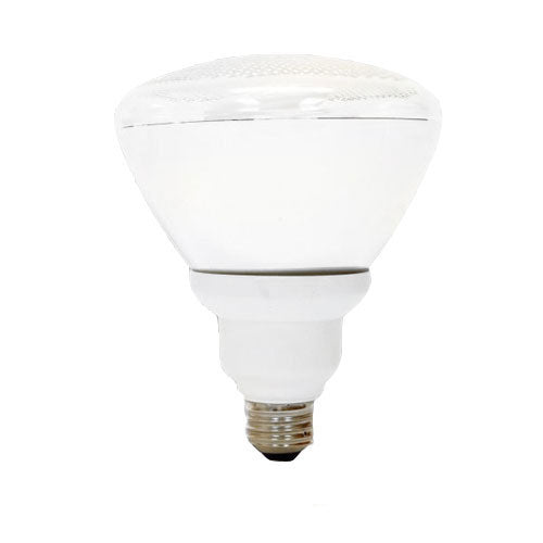 GE 26w PAR38 FLE26 Light Bulb