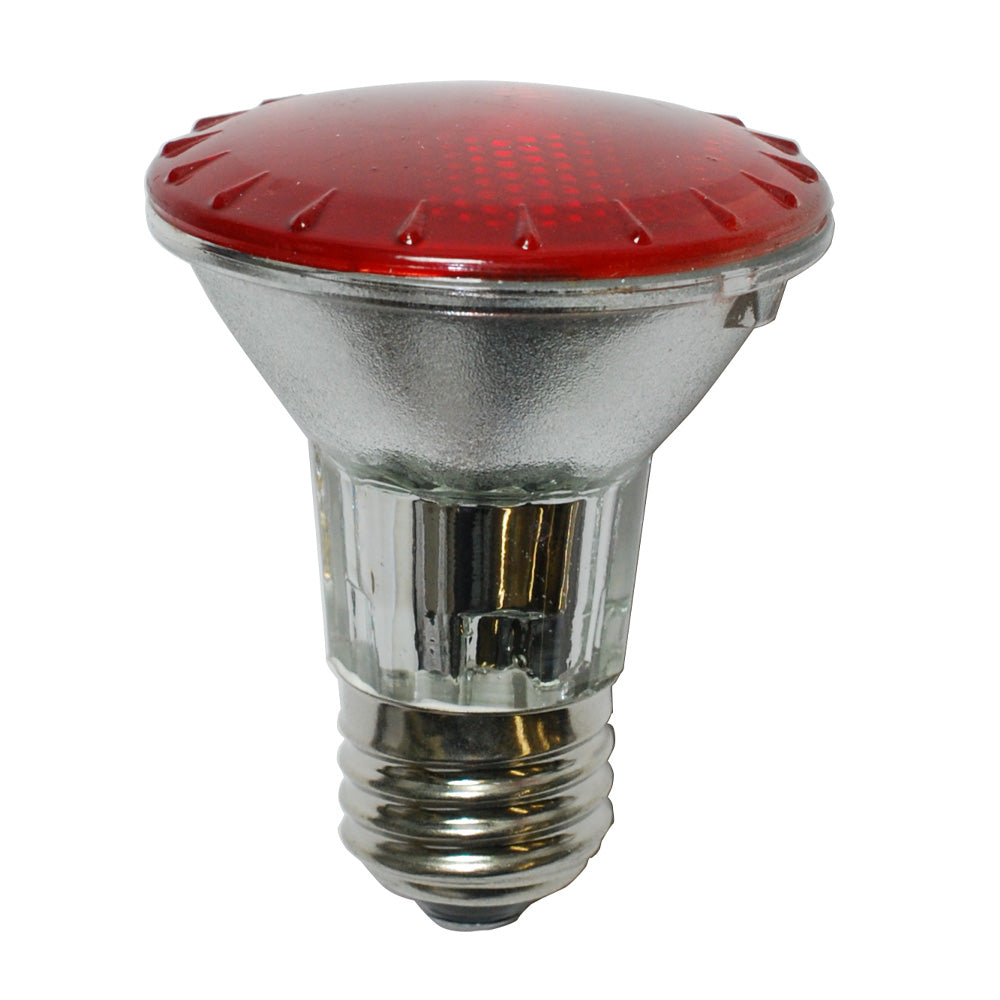 BulbAmerica 50W 120V PAR20 Narrow Flood Red Halogen Bulb