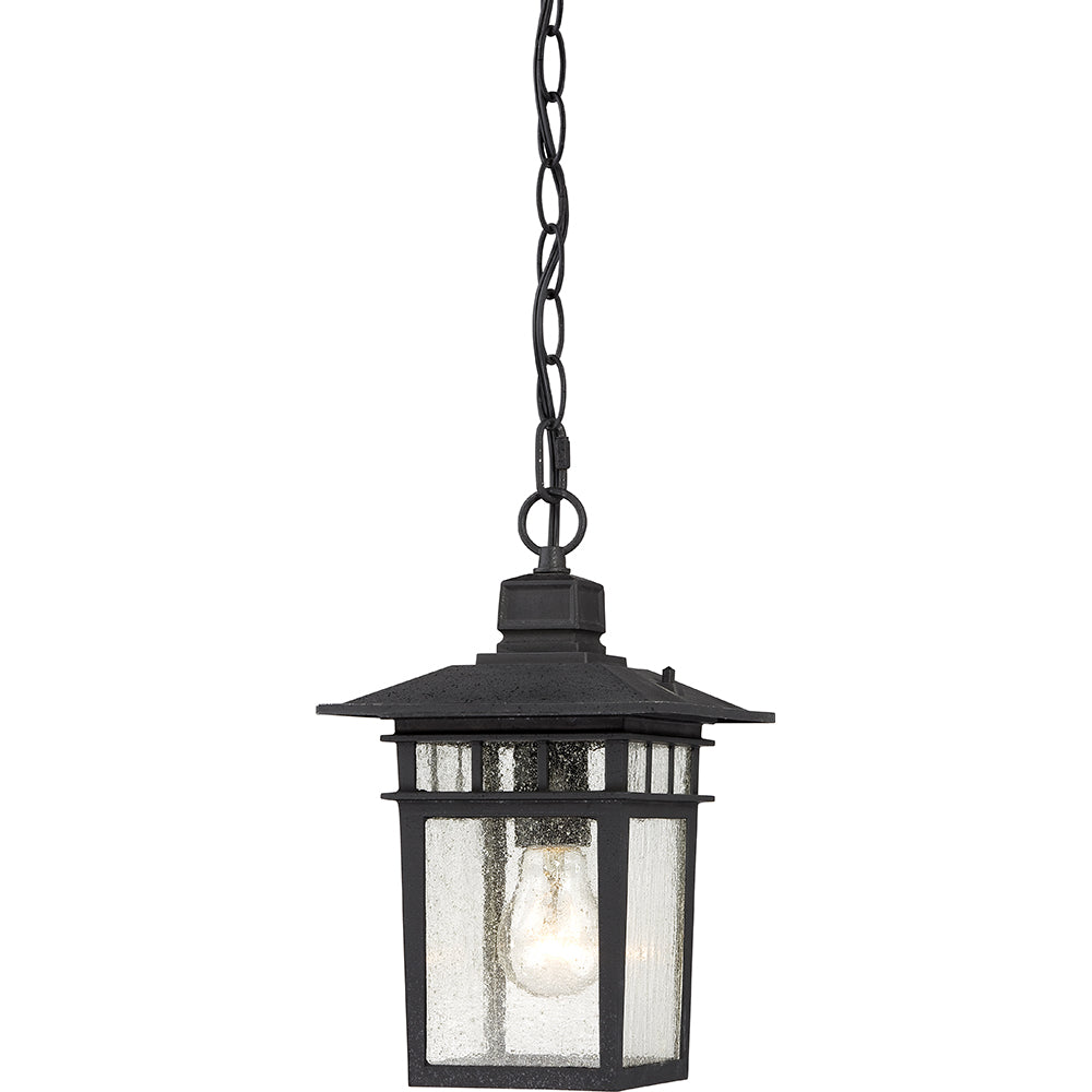 "Cove Neck - 1 Light - 12"" Outdoor Hang W/ Clear Seed Glass"