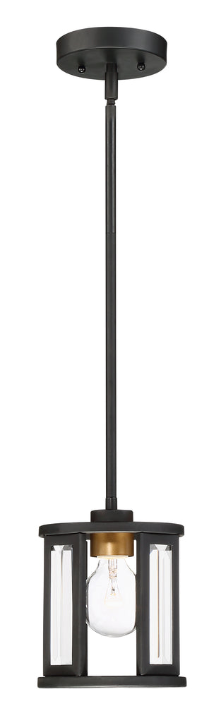 Payne 1-Light Mini-Pendant Mounted Pendant Light Fixture in Black Finish