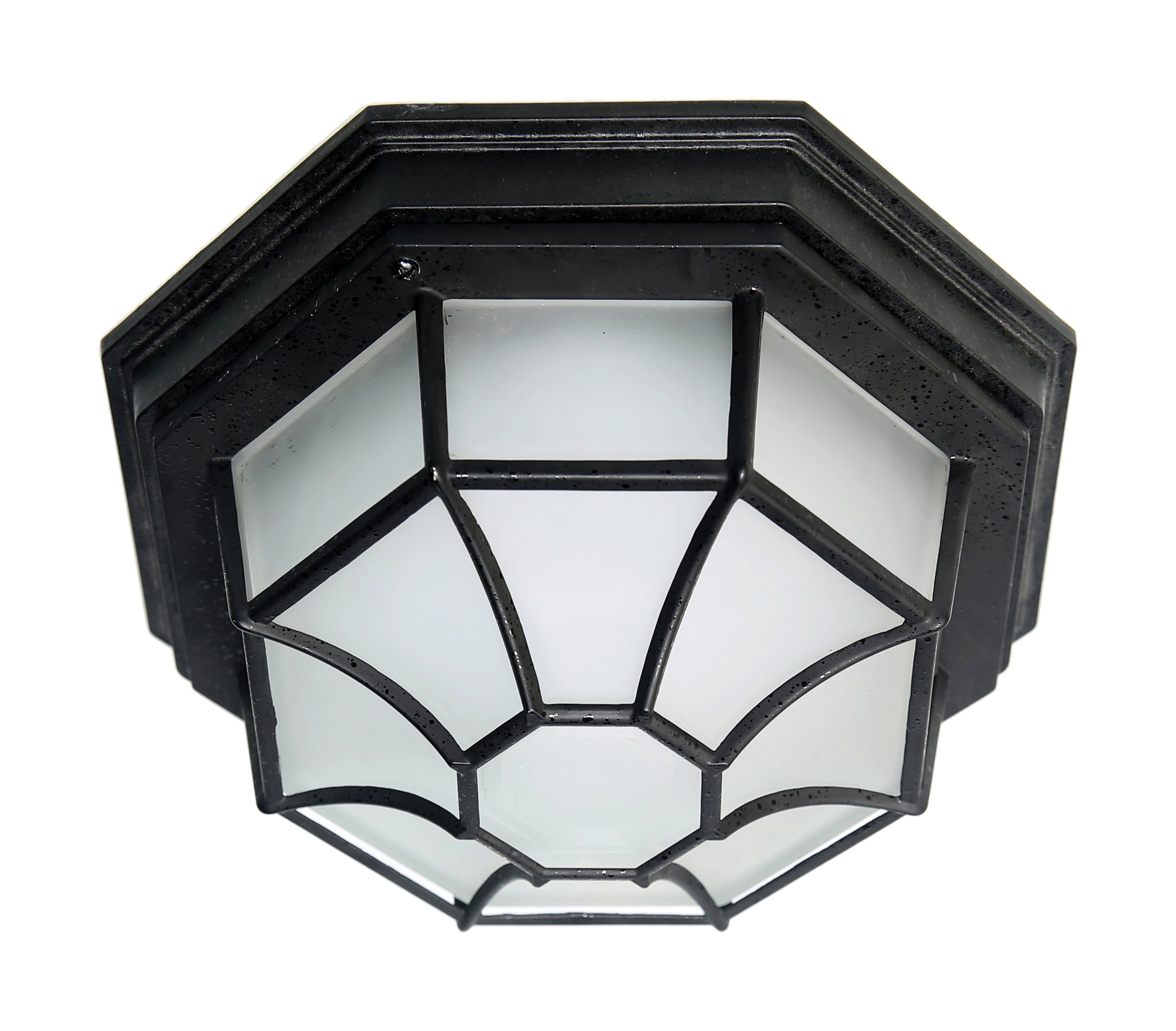 Nuvo 18.5w LED Spider Cage Fixture w/ Frosted Glass in Black Finish