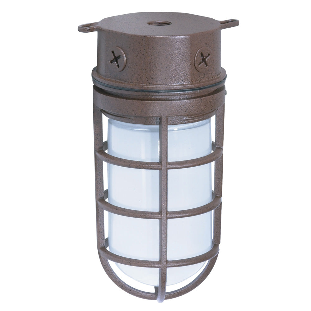 "1 Light - 10"" - Industrial Style - Surface Mount w/Frosted Glass"