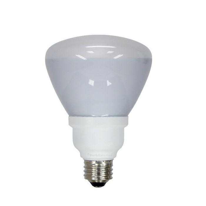 GE 15W R30 CFL Daylight Compact Fluorescent Light bulb - equal 65w incand