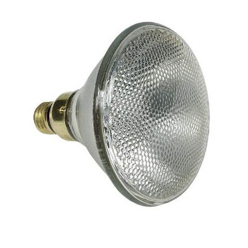 GE 75w 120v PAR38 Floodlight Halogen Reveal Bulb