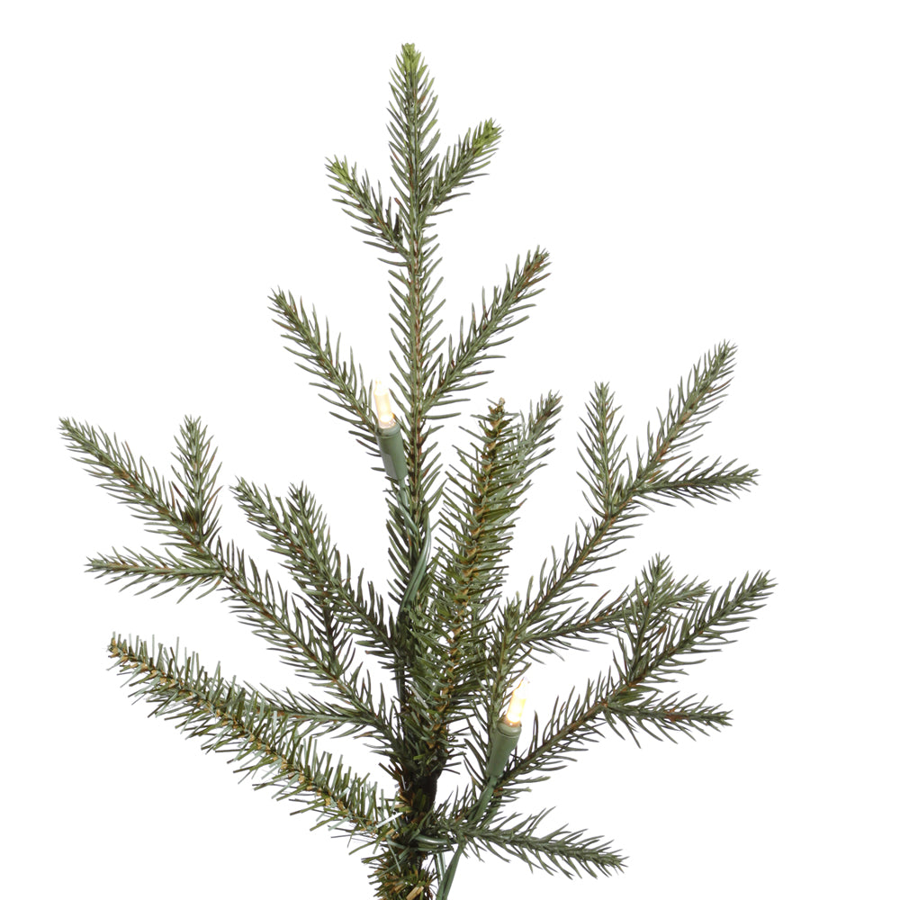Vickerman 7.5Ft. Green 2454 Tips Christmas Tree 750 Warm White LED Lights