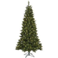 Vickerman 10Ft. Green 1903 Tips Christmas Tree 850 Clear Dura-Lit