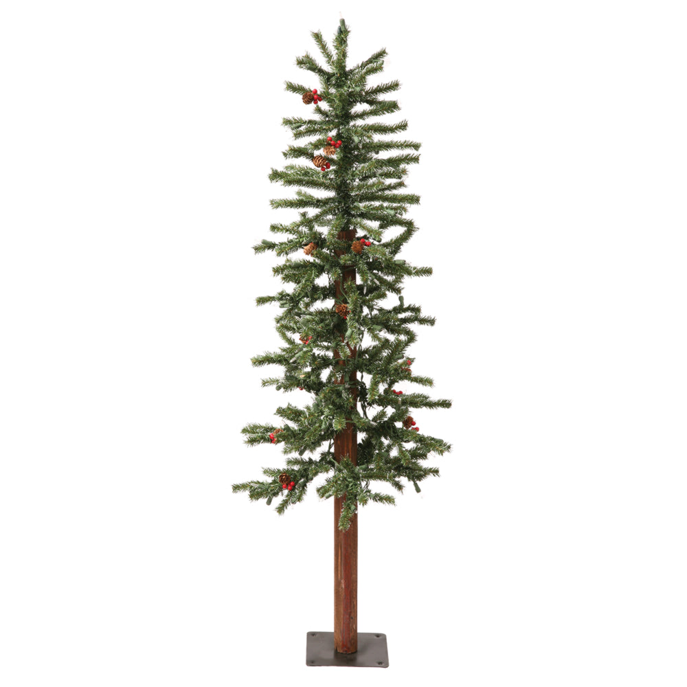Vickerman 3Ft. Frosted 179 Tips Christmas Tree