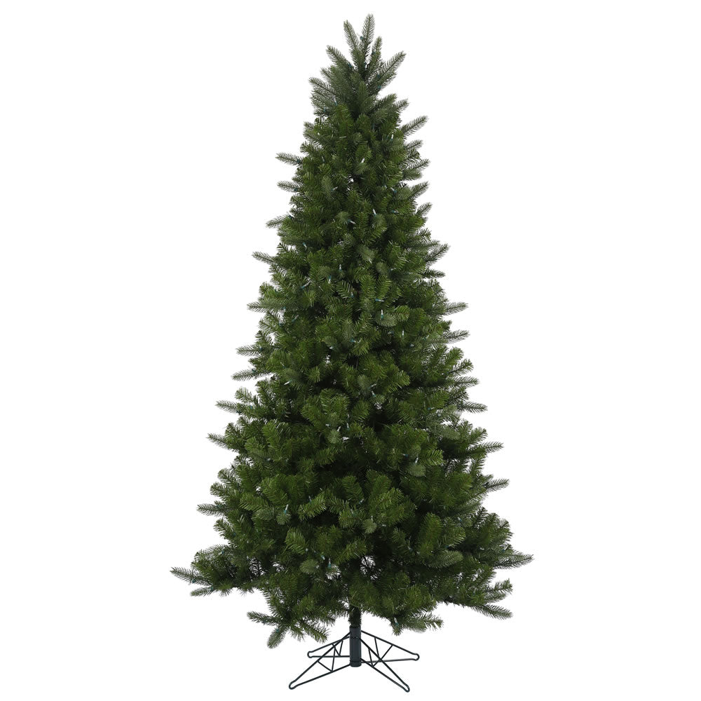 75Ft. Ogden Fir tree 1408 PE/PVC tips 600 warm white LED lights