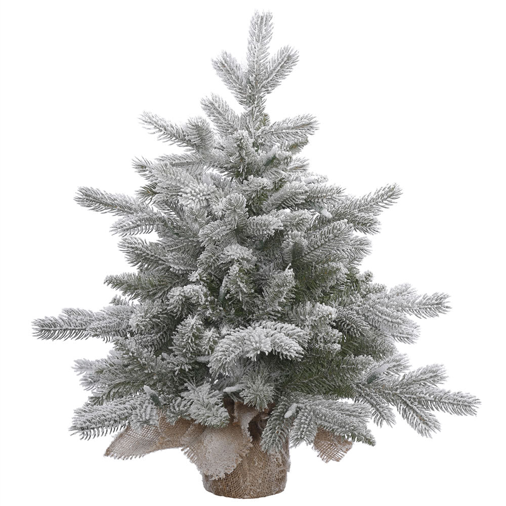 24in. x 24in. Frosted Sable Pine tree 106 frosted PE/PVC tips