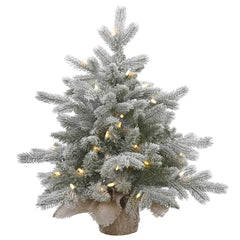 24in. Frosted Sable Pine tree 106 frosted PE/PVC tips 50 clear Dura-lit lights