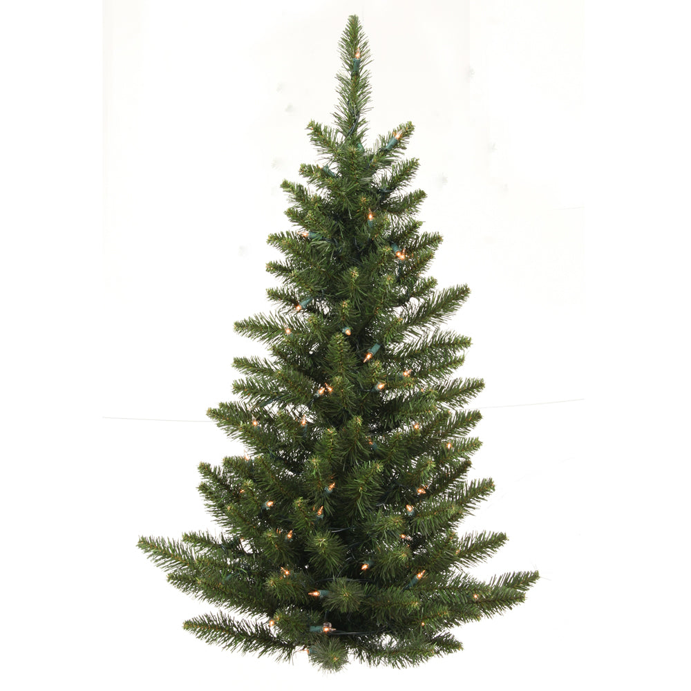 "3' x 26"" Camdon Wall Tree Dura-Lit 50CL"