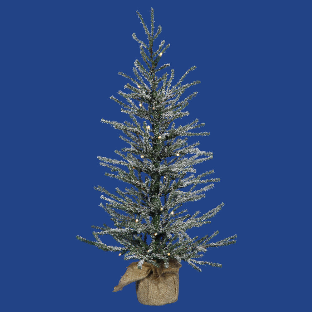 "18"" x 12"" Frosted Angel Pine 20CL 142T"