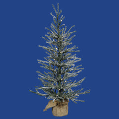 "Vickerman 24"" Frosted Angel Pine Artificial Christmas Tree Warm White LED Lights"