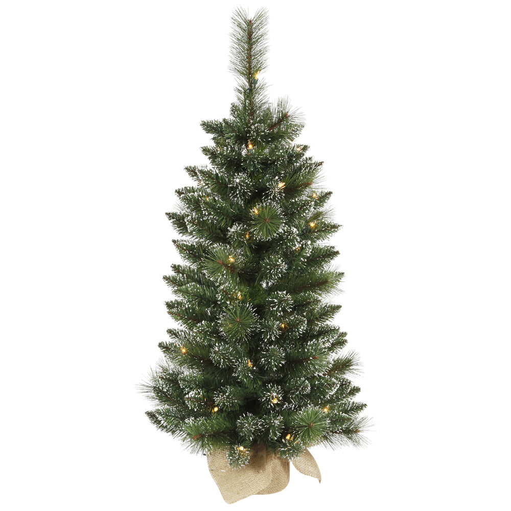 "3' x 17"" Mixed Snow Tip Pine Tree 50CL"