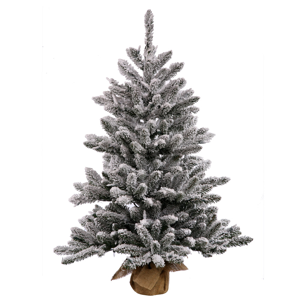 "Vickerman 24"" Flocked Anoka Pine Artificial Christmas Tree Warm White LED Lights"