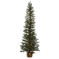 "4' x 16"" Mini Pine Tree 100 Clear BurlapBase"