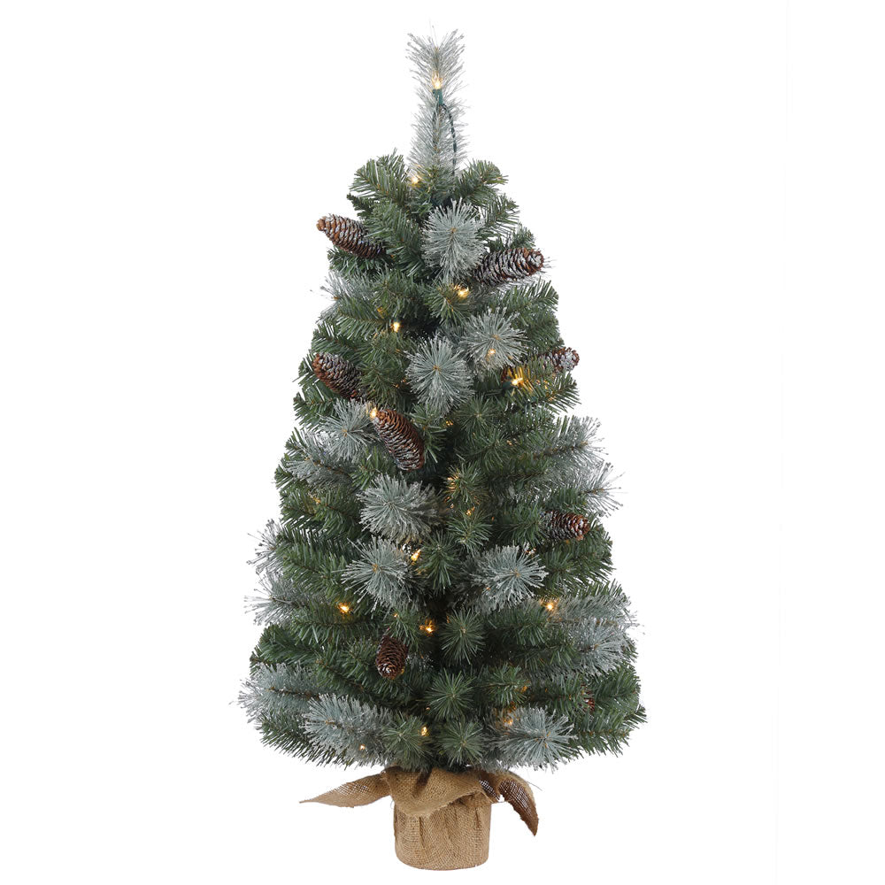 36in. x 19in. Shasta Blue Mix Pine Tree Burlap Base 50 Clear Lights 140Tips