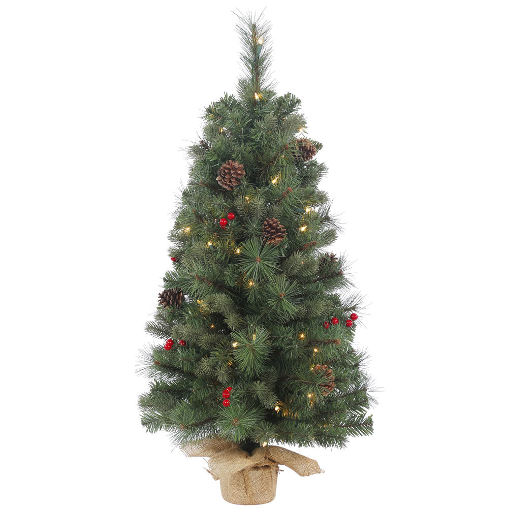24in. Wesley Mixed Pine Tree Burlap Base Pine Cones Red Berries 35 Clear Lights