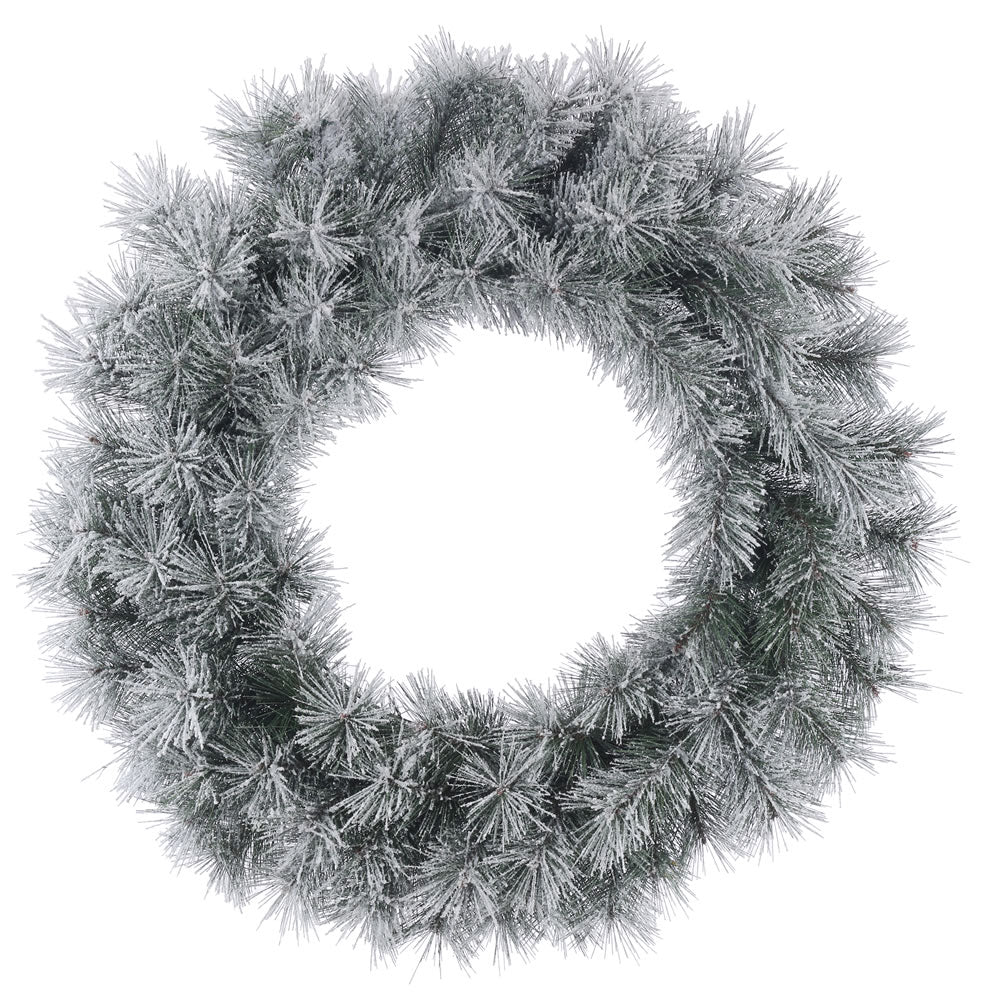 24in. Frosted Brewer Pine Wreath 70Tips