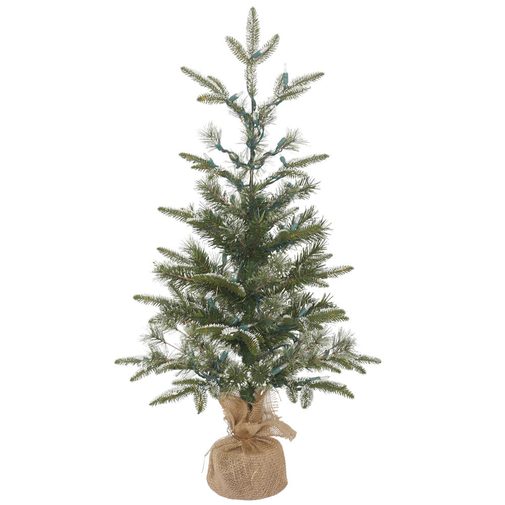 3Ft. Frosted Pasco Mixed Pine Medium White/Green Table Tree 137 PE/PVC Tips