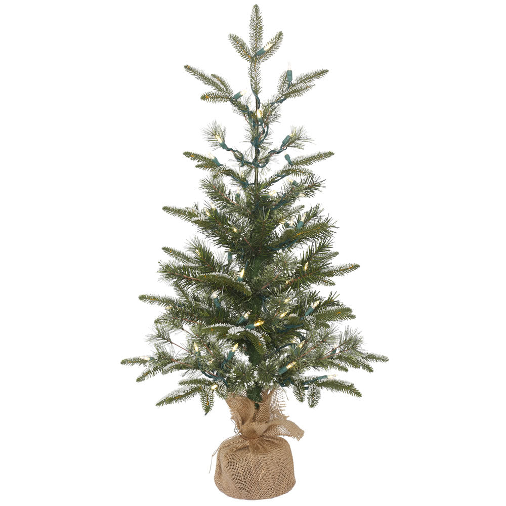 3Ft. Frosted Pasco Mixed Pine Medium White/Green Table Tree 50 Warm White LED