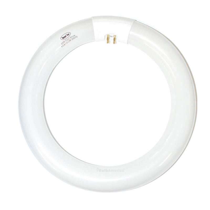 Luxrite 22w FCT9 Cool White 4-Pin Circline Fluorescent Light Bulb