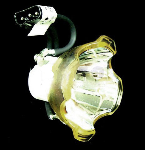 Infocus IN5104 Projector Brand New High Quality Original Projector Bulb