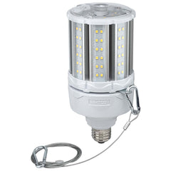 36W LED HID Replacement 2700K Medium base 100-277V