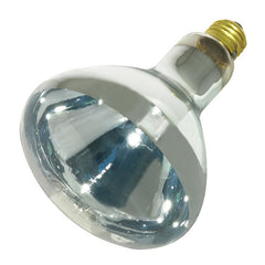Brand-Name Heat Lamp Bulbs - BulbAmerica