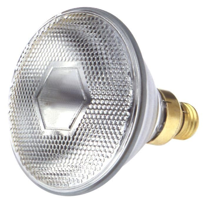 Satco S4953 65W 130V PAR38 Clear E26 Medium Skirted Incandescent light bulb