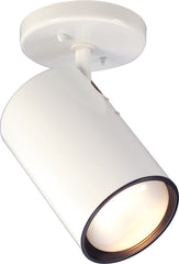 1-Light Flush Mounted Close-to-Ceiling Light Fixture in White Finish