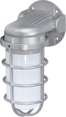 "Nuvo 1-Light 150w 10"" Industrial Wall Mount w/ Frosted Glass in Metallic Silver"