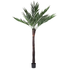 Vickerman 8' UV Resistant Kentia Palm 9 Fronds w/ 288 Leaves Natural Coco Trunk