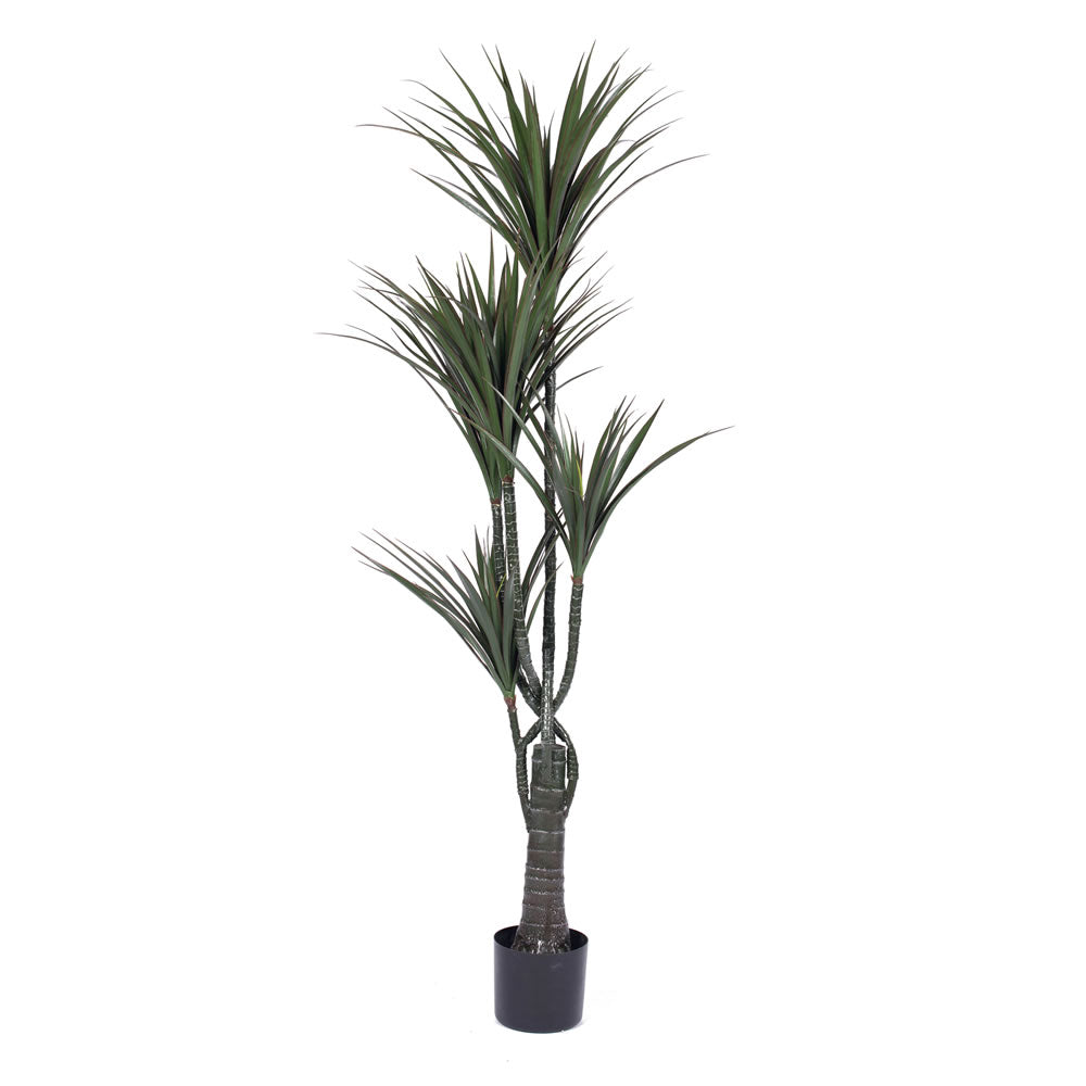 Vickerman 60'' UV Resistant Artificial Giant Yucca Tree 5 Branch Pot 167 Leaves